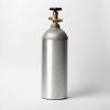 CO2 Cylinder, 5 Pound (Empty)