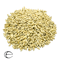 Epiphany Vienna Malt, 3.6-4.9L (Epiphany Craft Malt)