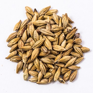 FULL BAG: 6 Row Pale Malt, 2L (Canada Malting Company)